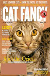 Cat Fancy Magazine - Pets and Animals