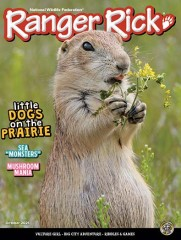 Ranger Rick magazine subscription